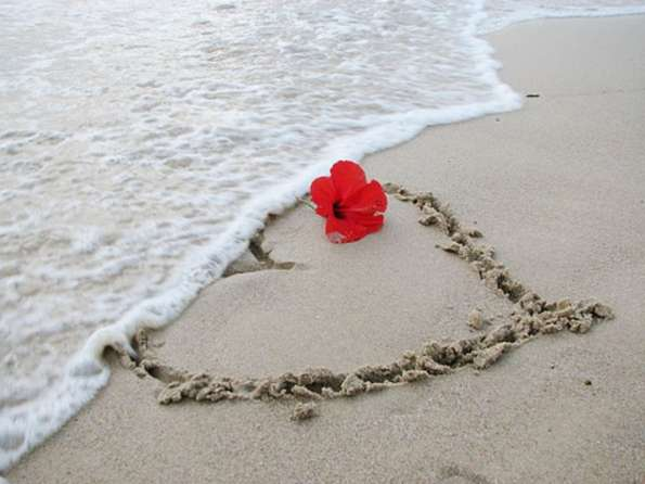 Love+is,+water,+sand,+flower,+fire,+earth,+air..+Love+Is