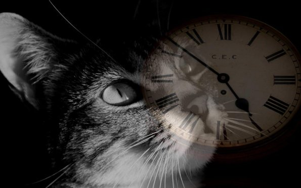 time_heals_all_wounds_background_by_theeditcat-d4vbc93