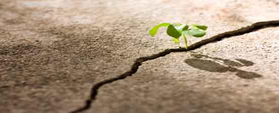 adversity_opportunity