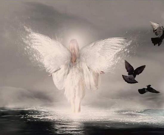 angel_007